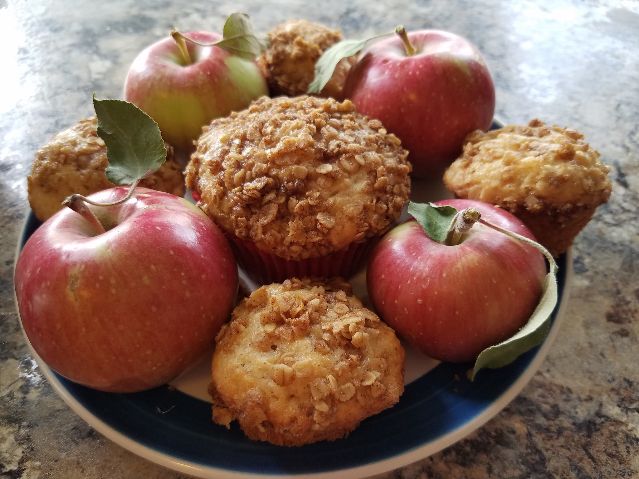 Amanda's Apple Cinnamon Oatmeal Muffins