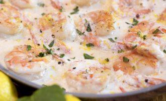 Chef Shamy Creamy Lemon Garlic Shrimp